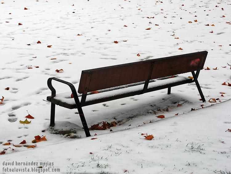 Banco solitario en la nieve con una hoja que cae (equinoccio de invierno)