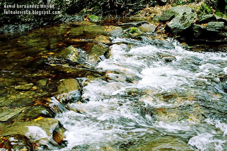 Agua que fluye, río que nunca es el mismo - Fotografía artística