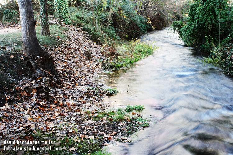 Río que sube o baja - Fotografía artística